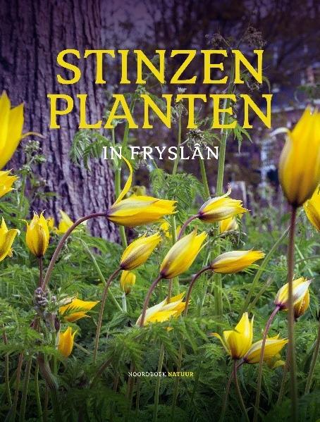 Stinzen planten in Fryslan